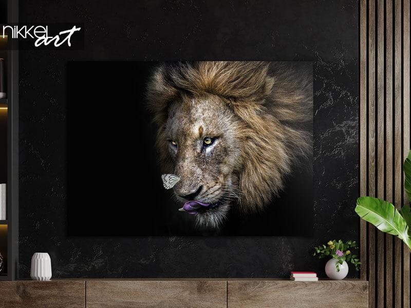 Robust und stilvoll: ein Löwe auf Alu-Dibond