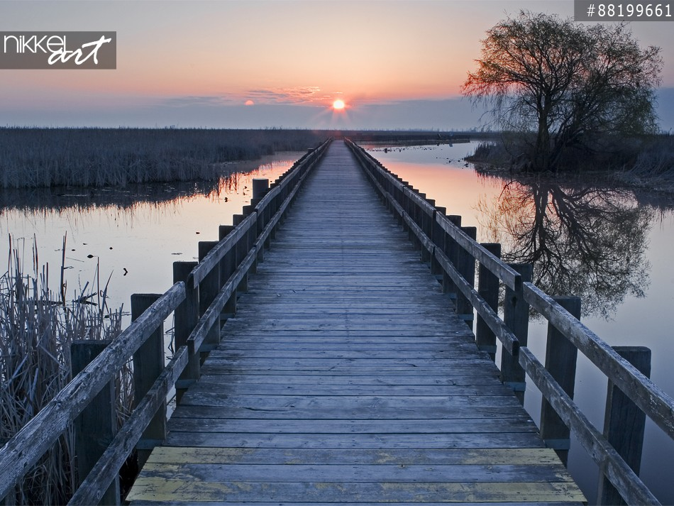 Ein Sonnenuntergang am Marsh Boardwalk at Point Pelee