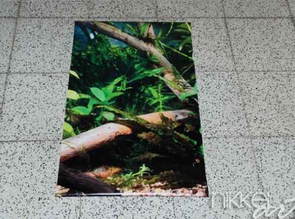 Foto auf Gartenposter Aquarium