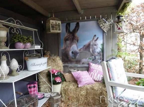 Foto auf Gartenposter Esel