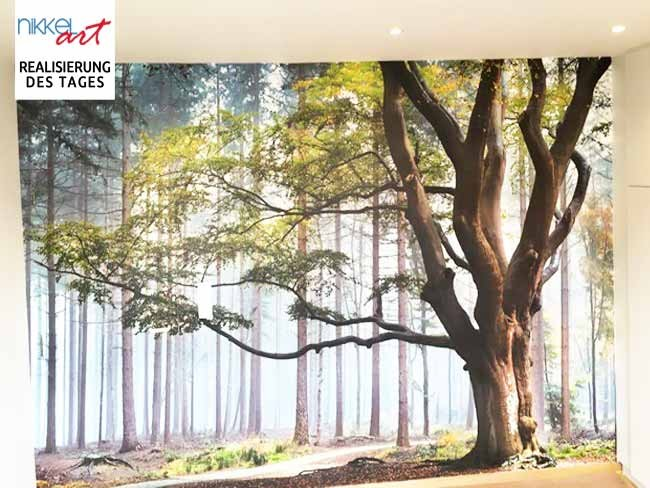 Fototapeten Wald für Ihr Schlafzimmer