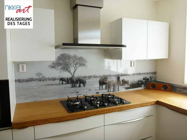 Küchenrückwand alu dibond  Foto Küchenrückwand Afrika