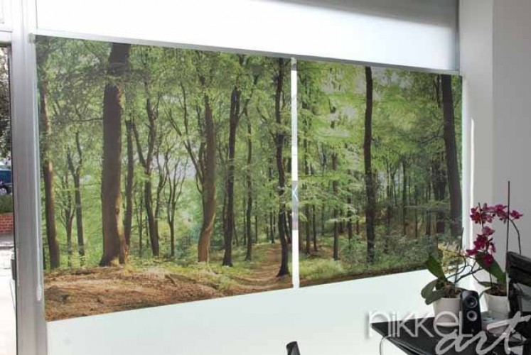Rollos mit fotodruck Wald