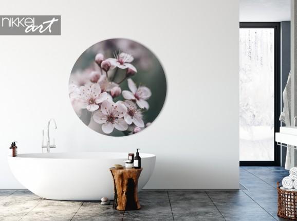 Alu-Dibond-Wandkreis Frühlingsblüte