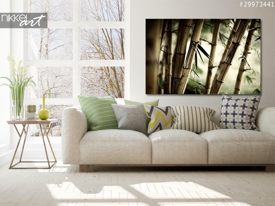 Foto auf Alu-dibond Bambus-Wald