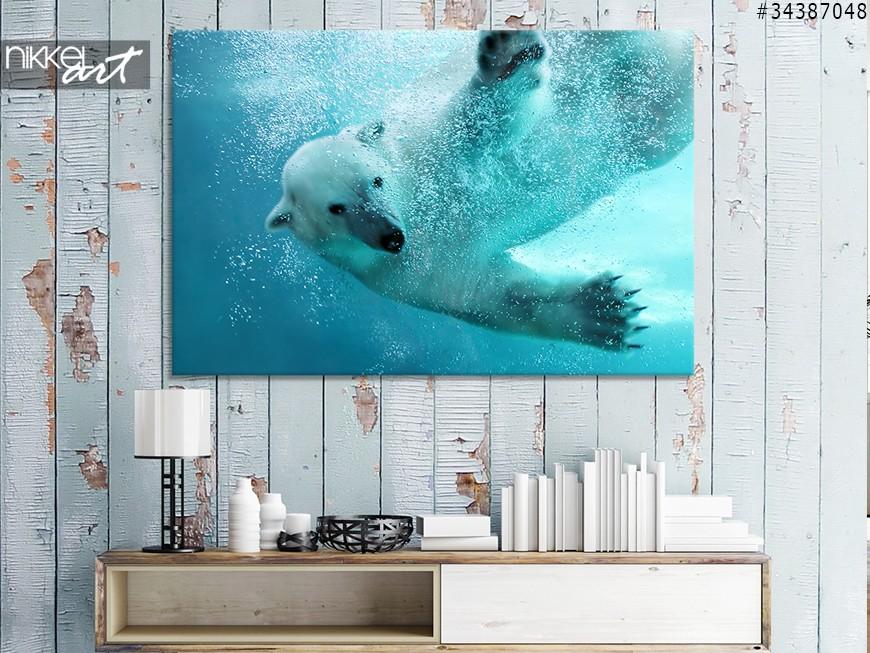 Foto auf Leinwand Eisbar