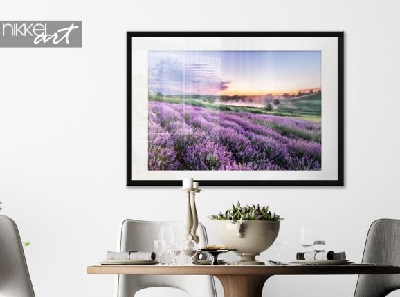Poster im Rahmen Lavendelfeld