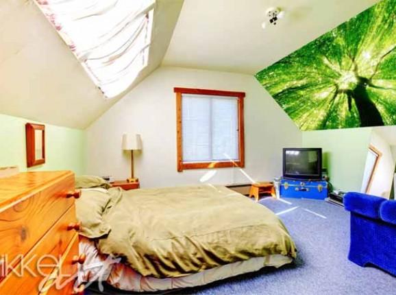 Inspiration an der Wand   Foto-Aufkleber   Wälder