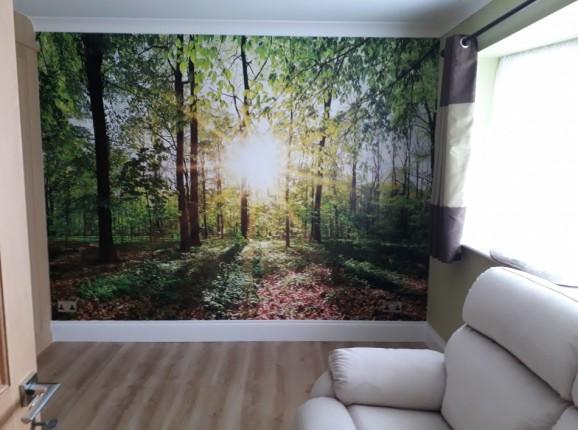 Fototapete Grüner Wald mit Sonne