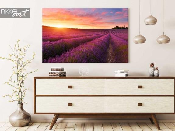 foto auf leinwand lavendel. Black Bedroom Furniture Sets. Home Design Ideas