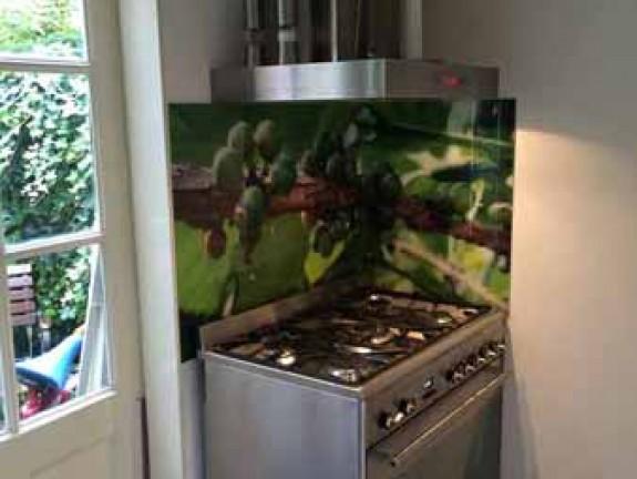 Küchenrückwand Glas Foto : k chenr ckwand foto glas ~ Michelbontemps.com Haus und Dekorationen